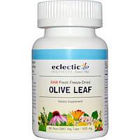 Eclectic Institute, Лист оливы, 400 мг, 90 растительных капсул без ГМО, ECL-30996