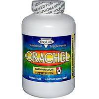 OxyLife, Orachel, поддержка сердечно-сосудистой системы, 180 капсул, OXY-01576