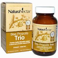 NaturaNectar, Абсолютно натуральный пчелиный прополис - трио, 60 вегетарианских капсул, NNR-32655