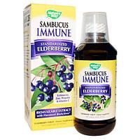 Nature's Way, Sambucus Immune, сироп из бузины, 8 жидких унций (240 мл), NWY-15333