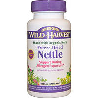Oregon's Wild Harvest, Крапива сублимированная, 90 вегетарианских капсул без ГМО, OWH-00045