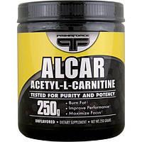 Primaforce, Alcar, Ацетил-Л-карнитин в порошке без вкуса, 250 г, PMF-02005