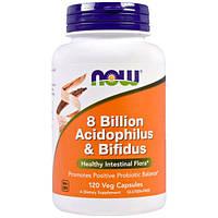 Now Foods, 8 Миллиардов Ацидофилов & Бифидобактерий, 120 вегетарианских капсул, NOW-02932