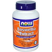 Now Foods, Экстракт босвеллии, 250 мг, 120 растительных капсул, NOW-04614