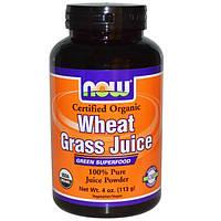 Now Foods, Organic, сок ростков пшеницы, 100 % чистый сок в порошке, 4 унции (113 г), NOW-02709