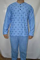 Пижама мужская синяя 100% хлопок размер L  (48)