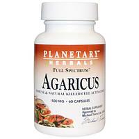Planetary Herbals, Агарик полного спектра, 500 мг, 60 капсул, PTF-10702