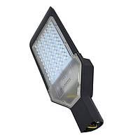 Уличный светодиодный светильник SL50W Ledex для загороднего дома, фото 1