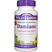 Oregon's Wild Harvest, Дамиана, 90 вегетарианских капсул без ГМО, OWH-00460