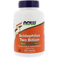 Now Foods, Ацидофилин два миллиарда, 250 капсул, NOW-02907