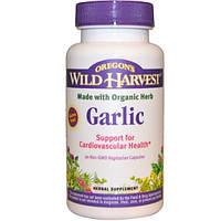 Oregon's Wild Harvest, Чеснок, 90 капсул на растительной основе без ГМО, OWH-00032