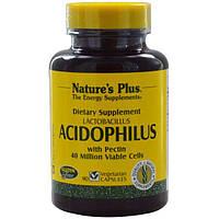 Nature's Plus, Лактобактерии Ацидофилус, 90 Капсул, NAP-04480