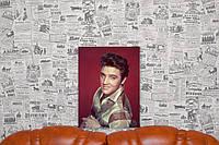Элвис Пресли. Elvis Presley. 40х30 см. Картина на холсте.