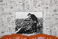 Элвис Пресли. Elvis Presley. 40х50 см. Картина на холсте.