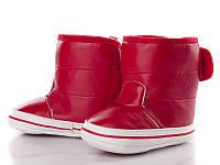Детская зимняя обувь оптом. Детские зимние пинетки бренда Clibee для девочек (рр. с 18 по 21)