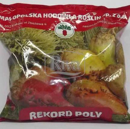 Кормовая свекла Рекорд Поли (Poland) - 1 кг, фото 2