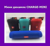 Мини динамик CHARGE-MINI