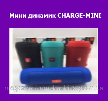 Мини динамик CHARGE-MINI!Опт, фото 2