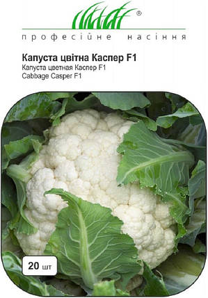 Семена капусты цветной Каспер F1 20 шт, Rijk Zvaan, фото 2