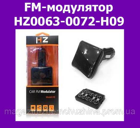 FM-модулятор HZ0063-0072-H09, фото 2