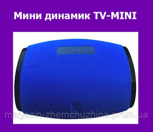 Мини динамик TV-MINI!Опт, фото 2