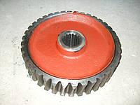 Колесо червячное редуктора поворота отвала ГС-14.02