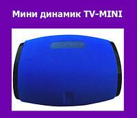 Мини динамик TV-MINI!Акция