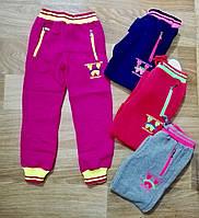 Спортивные  штаны с начесом для девочек оптом,Sincere 116-146 рр., арт. AD-636