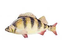 """Мягкая игрушка """"Рыба"""" карась 6921DT"""