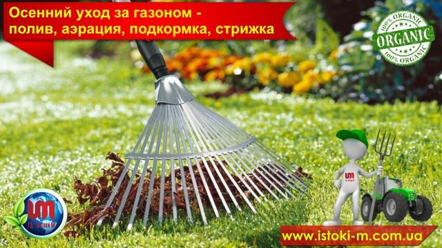 уход за газоном осенью_подкормка газона_удобрения для газона_органические удобрения для подкормки газона
