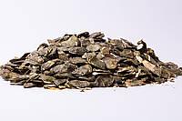 Шрот насіння гарбуза