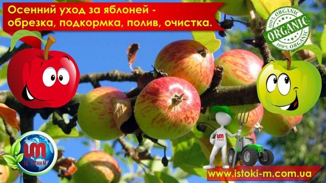 обрезка яблони_подкормка яблони_полив яблони