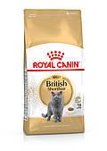 Royal Canin British Shorthair 10 кг роял канин для британцев