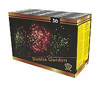 Салют Dahlia Garden на 36 выстрелов