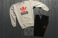 Тёплый спортивный костюм Adidas Originals, адидас