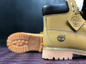 Женские ботинки Timberland Yellow на меху топ реплика, фото 3