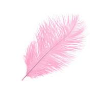 Перо страуса Декоративные (Перья) Розовые 15-20 см 5 шт/уп