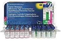 Zoetis Вангард Плюс 5 L4 CV Вакцина для профилактики чумы, инфекционного гепатита, аденовирусной инфекции, парагриппа плотоядных, парвовирусного