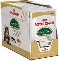 Упаковка Royal Canin Maine Coon -Влажный корм для котов породы Мейн-кун, 85г