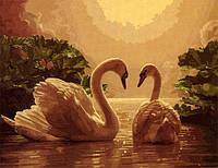 Рисование по номерам G275 Лебеди 40*50 см