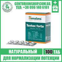 TENTEX FORTE (ТЕНТЕКС ФОРТЕ) | Для увеличения либидо и половой активности