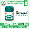 SPEMAN (Спеман) | Таблетки для повышения качества спермы