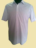 Мужская рубашка белая на короткий рукав