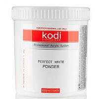 Акрил базовый KODI PROFESSIONAL Perfect  Powder (500 g) , фото 1