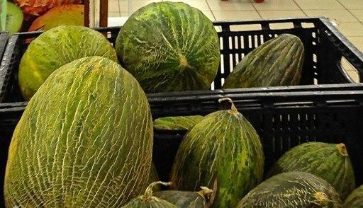 Дыня Пьел Де Сапо ТМ Hortus (Италия) Фермерская банка 500 грамм