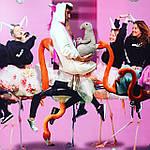 Семья ждунов: розовый, голубой, серый, зеленый ждун (4 шт. - 20 см.), фото 4