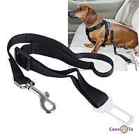 Ремінь безпеки для собак і кішок в авто, 1001657