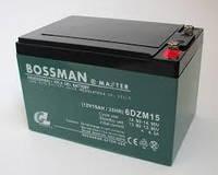 Аккумуляторная батарея DZM Bossman 12V / 12AH