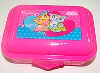 Бутербродница (Ланчбокс) Zibi ZB3050 для девочек