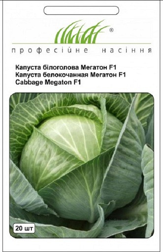 Семена капусты белокочанной Мегатон F1 20 шт, Bejo Zaden